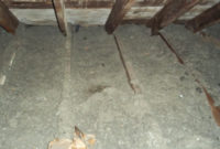 60 Old Insulation In Attic Maxresdefaultjpg Vendermicasa with dimensions 4000 X 2248