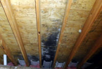 Bathroom Fan Venting Into The Soffit Quigley Mold Remediation pertaining to measurements 2953 X 2201