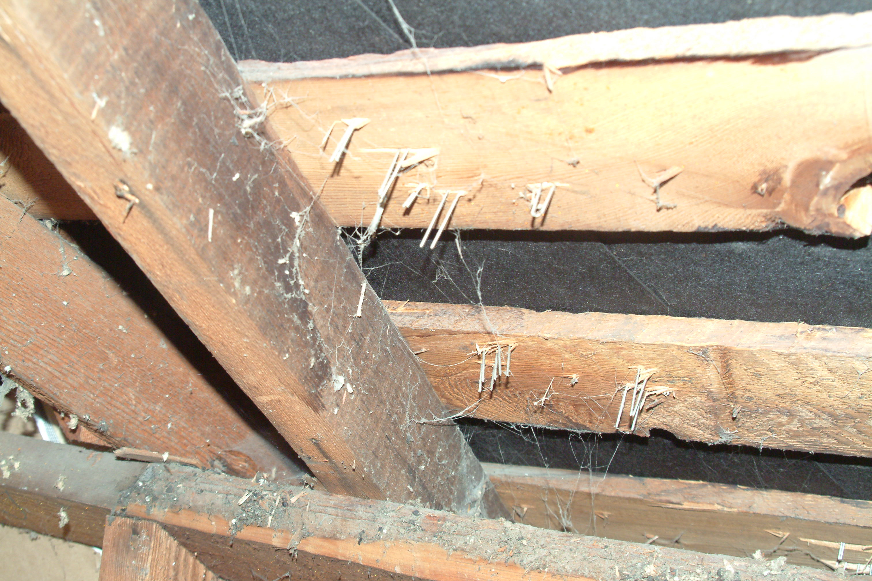 Is This Insulation Too Good To Be True Greenbuildingadvisor inside size 3024 X 2016