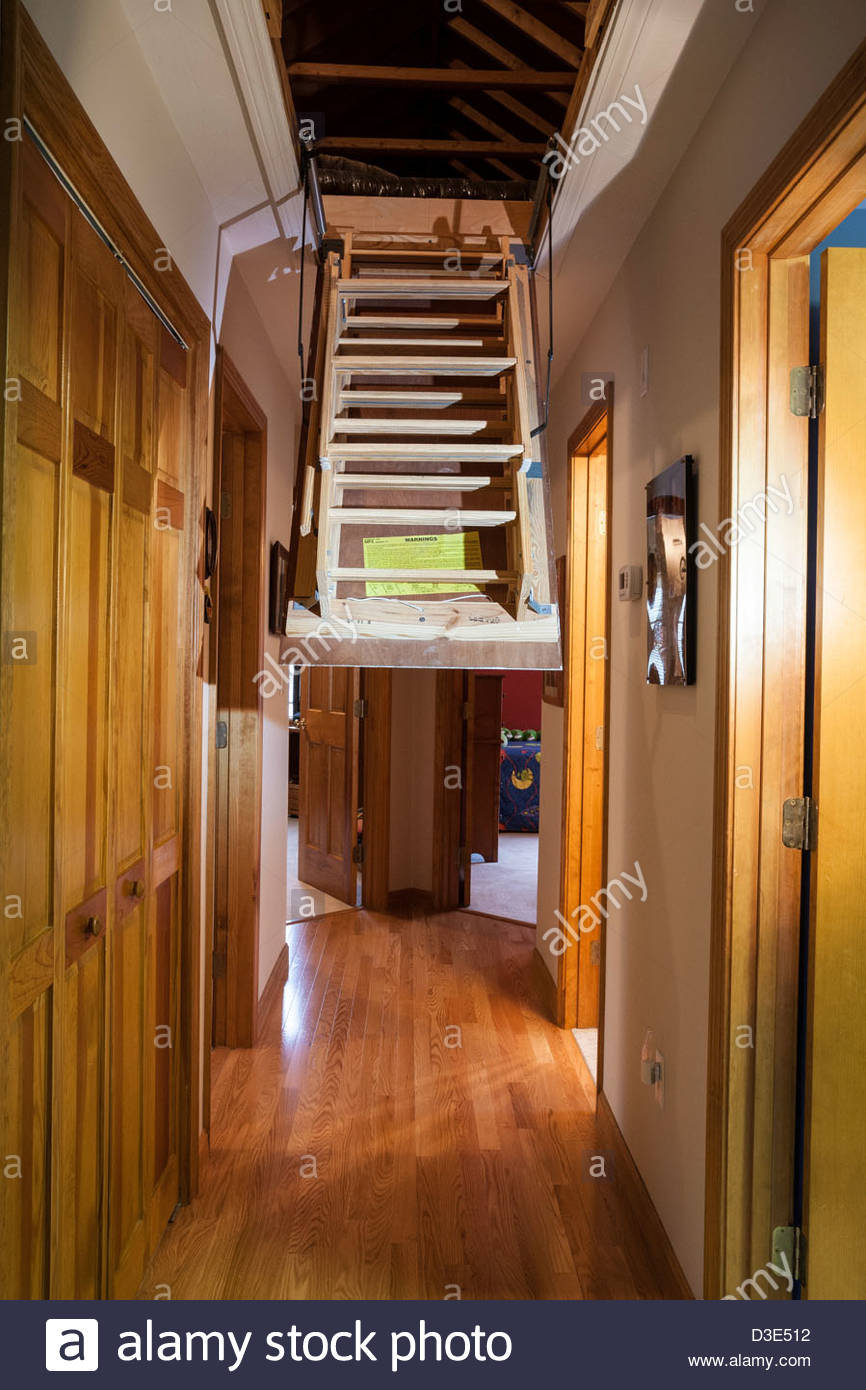 Attic Trap Door Stairs Attic Ideas